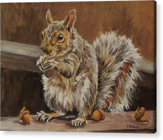 Wildlife Acrylic Print featuring the painting Nutkin by Cheryl Pass