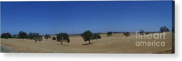 Paso Robles Acrylic Print featuring the photograph Paso Robles by Lori Leigh
