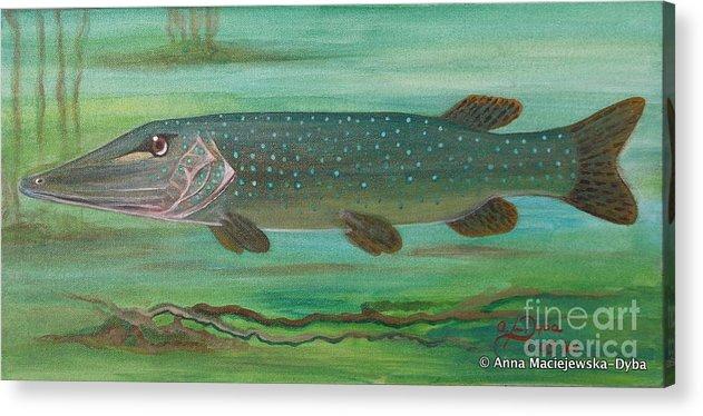 Folkartanna Acrylic Print featuring the painting Pike by Anna Folkartanna Maciejewska-Dyba