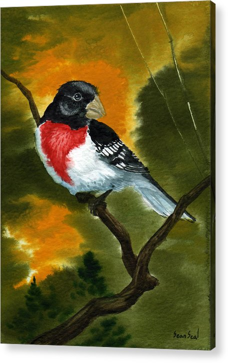 Birds Acrylic Print featuring the painting Rose Breasted Grossbeak by Sean Seal
