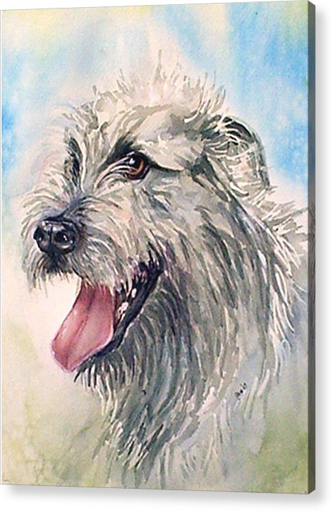 Canine Acrylic Print featuring the painting Ruffy by Gina Hall