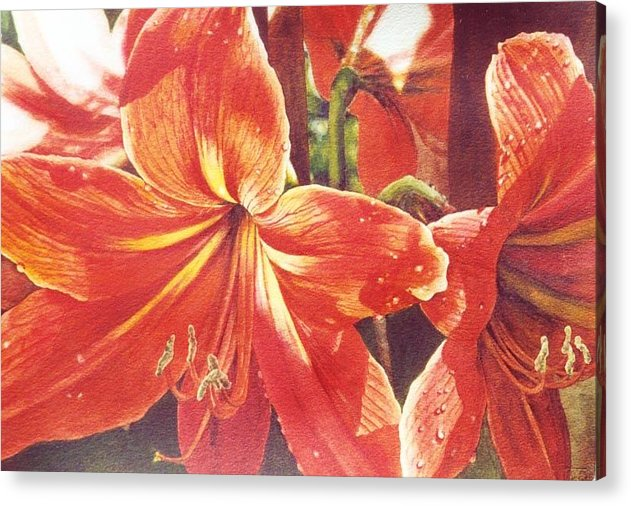 Flower Acrylic Print featuring the painting Sweet Amaryllis by Marion Hylton