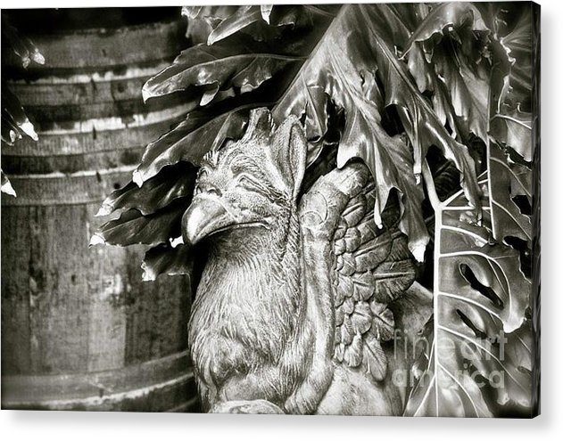 Phoenix Acrylic Print featuring the photograph The Mythical Phoenix by Lori Leigh