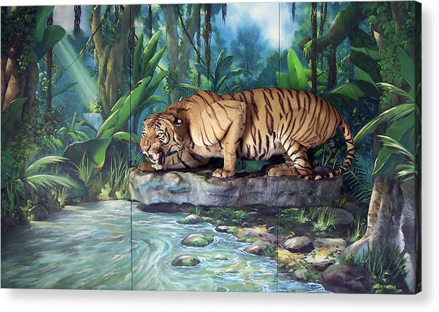 Bengal Tiger Acrylic Print featuring the painting Tony by Steven Welch