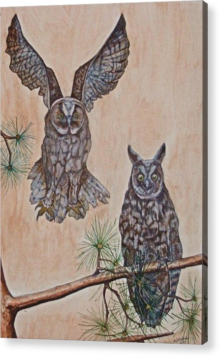 Landscape Acrylic Print featuring the painting Two Owls by Willie McNeal