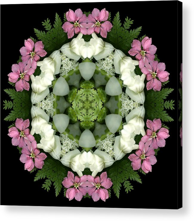 Mandala; Floral; Botanical; Scanner Photography; Scanography;snapdragons; Pink; White; Leaves; Acrylic Print featuring the photograph Bridesmaid by Marsha Tudor