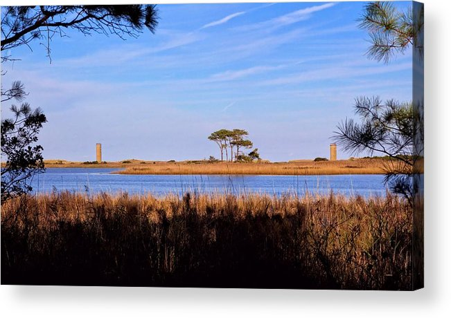 Four Trees Acrylic Print featuring the photograph Four Trees H by Robert McCulloch