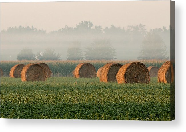 Haybale Acrylic Print featuring the photograph Haybales by Sarah Boyd