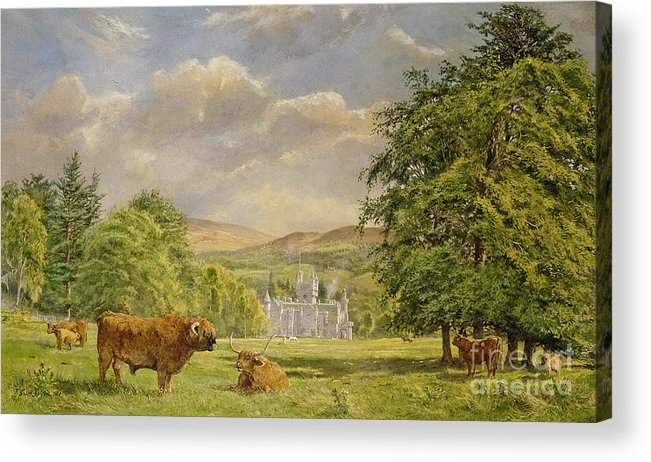 Landscape; Highland Cattle; Angus; Cow; Royal Residence;scottish Baronial; Horn; Horns Park; Bulls; Bull; Balmoral Castle; Balmoral; Hill; Hills; Tree; Trees; Grass; Green; Scottish Acrylic Print featuring the painting Bulls At Balmoral by Tim Scott Bolton