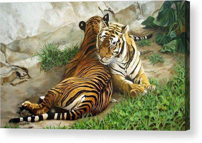 Tiger Acrylic Print featuring the painting Wild Content by Sandra Chase