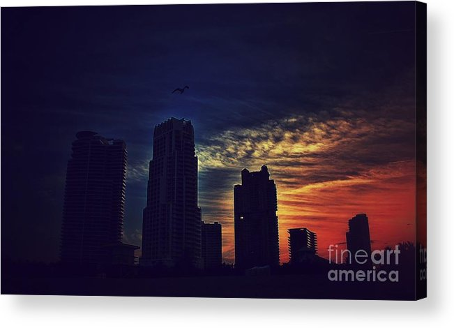 Miami Acrylic Print featuring the photograph Sunset by Brahimou NG