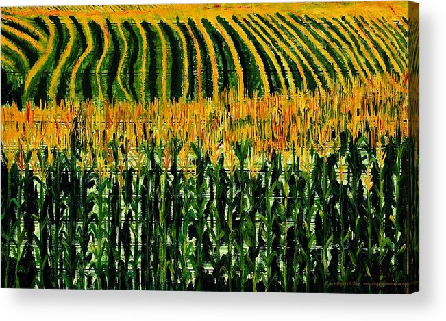 Corn Acrylic Print featuring the painting Cash Crop Corn by Gregory Allen Page