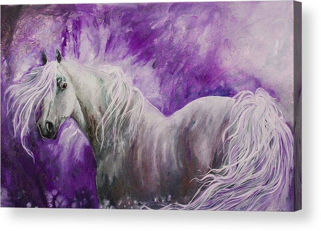 Horse Acrylic Print featuring the painting Dream Stallion by Sherry Shipley