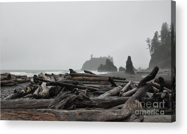 Morning Acrylic Print featuring the photograph Foggy Morning On The Washington Coast 2 by Tanya Searcy
