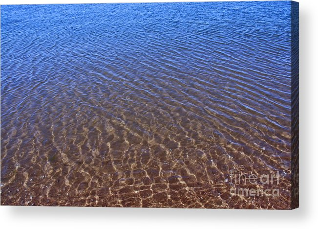Into The Blue Acrylic Print featuring the photograph Into The Blue by Cindy Lee Longhini