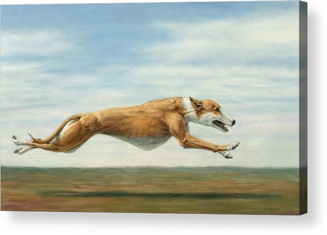Greyhound Acrylic Print featuring the painting Running Free by James W Johnson