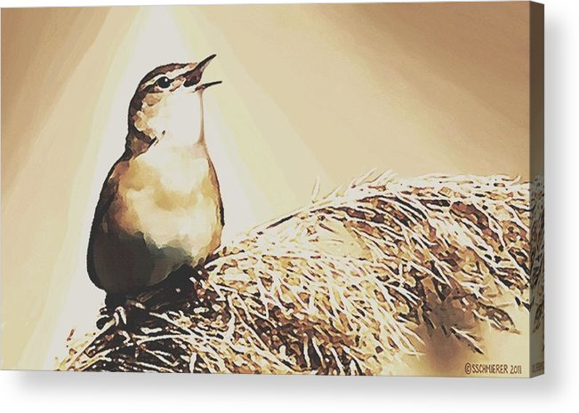 Bird Acrylic Print featuring the painting Singing My Heart Out by Sophia Schmierer