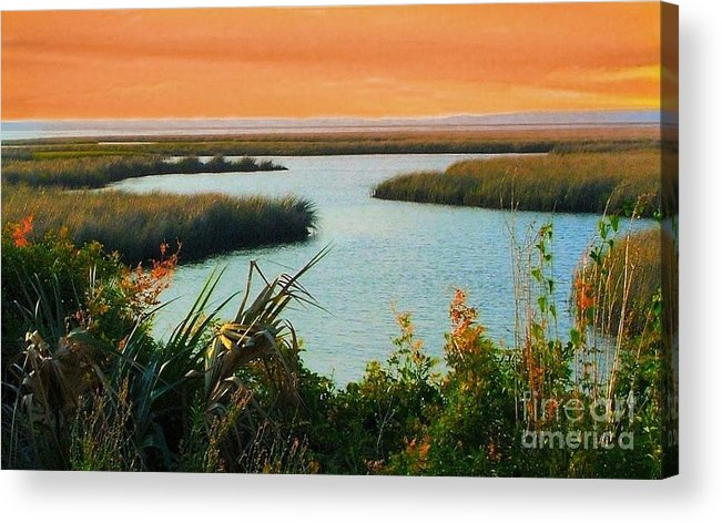St. Marks Acrylic Print featuring the photograph Dreamsicle Sunset by Julie Dant
