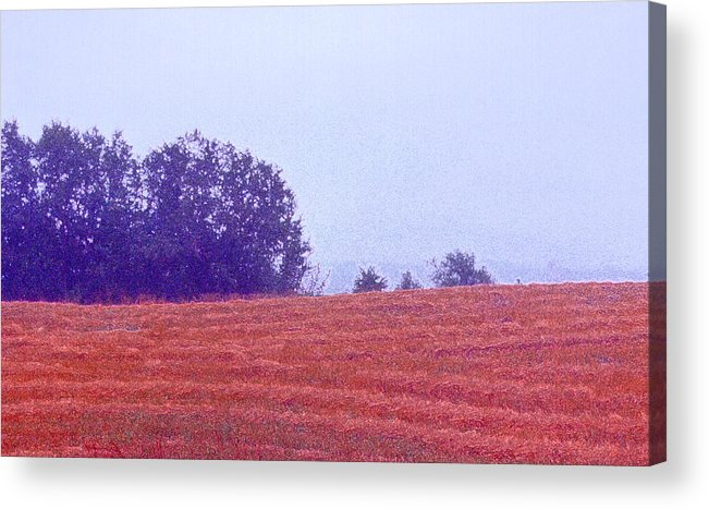 Landscape Acrylic Print featuring the photograph Freshly Cut Hay Ae by Lyle Crump