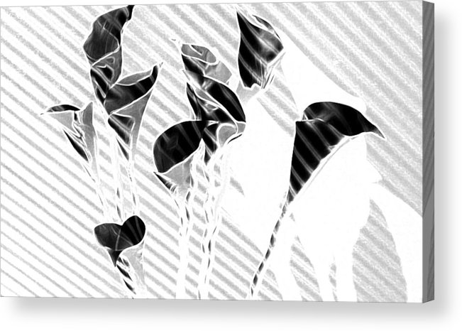 Flowers Acrylic Print featuring the painting Calla Lilies by Gary at TopPhotosI