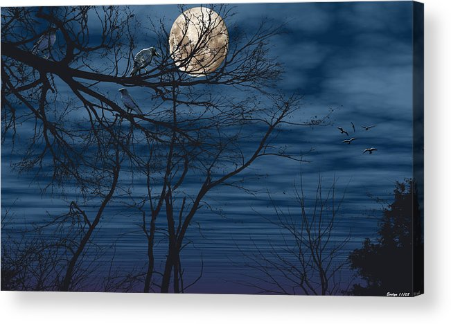 Birds Acrylic Print featuring the photograph As The Crow Flies by Evelyn Patrick