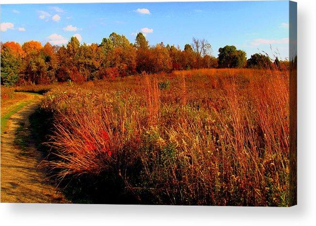 Autumn Acrylic Print featuring the painting Autumns Field by Scott Heaton