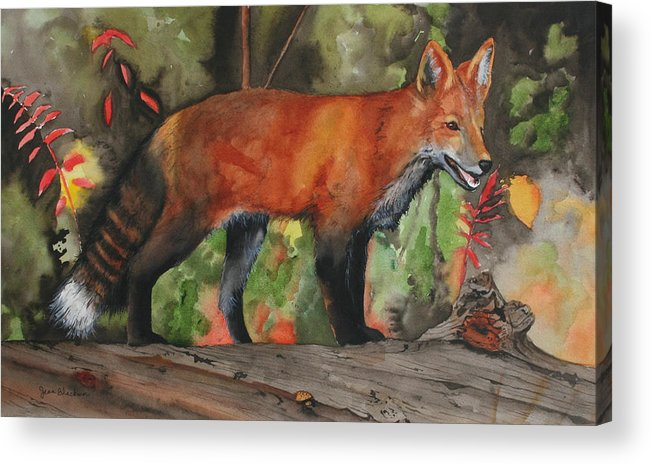 Fox Acrylic Print featuring the painting Hiding In Plain Sight by Jean Blackmer
