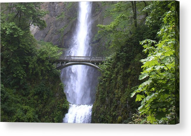 Waterfall Acrylic Print featuring the photograph Multnomah Falls Wf1051a by Mary Gaines