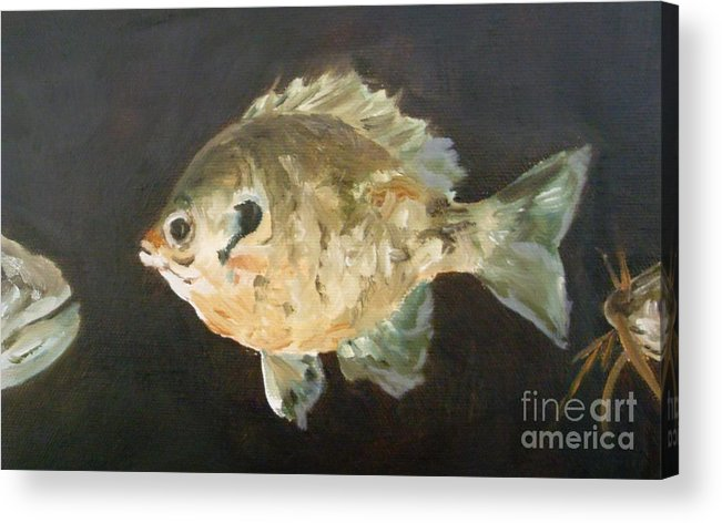 Fish Acrylic Print featuring the painting Uh-oh by Debbie Anderson