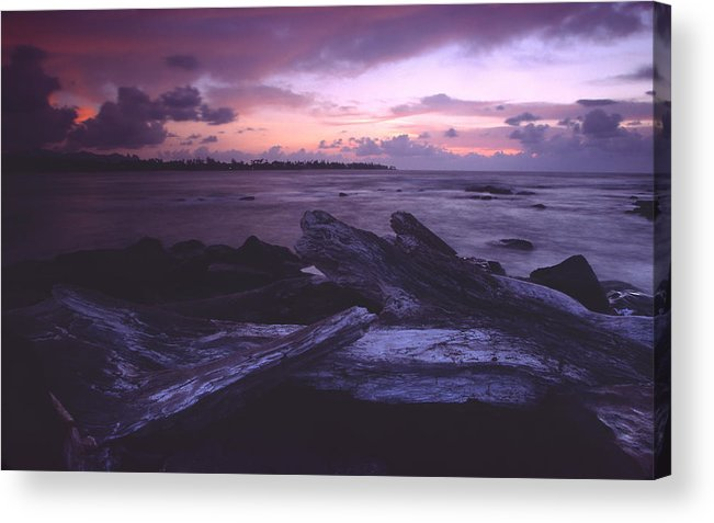 Driftwood Acrylic Print featuring the photograph A Driftwood Morning by Morris McClung
