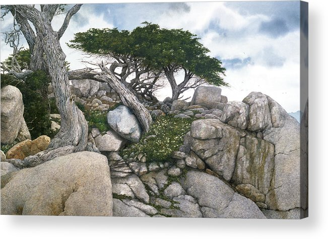 Seascape Acrylic Print featuring the painting Among The Cypress by Tom Wooldridge