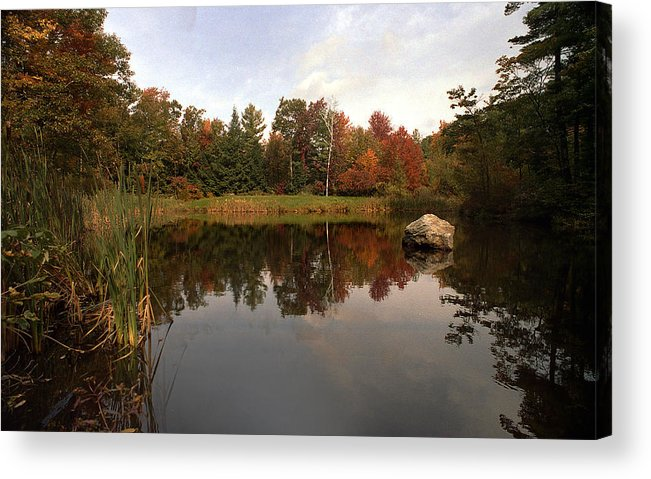 Fall Acrylic Print featuring the photograph Fall Pond by Skip Willits