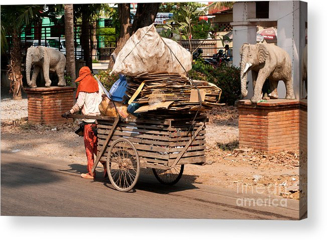 Cambodia Acrylic Print featuring the photograph Scavenger by Rick Piper Photography