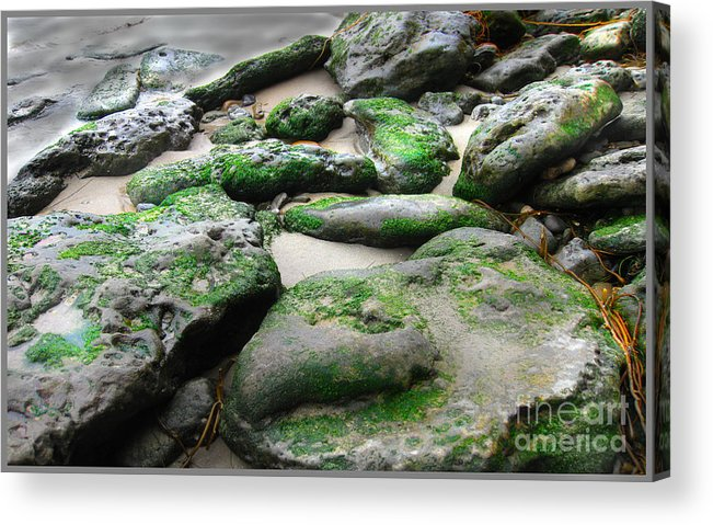 Nature Acrylic Print featuring the photograph Weathered By Tides by Dawn De Vos