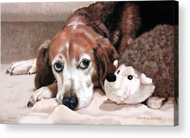 Dog Acrylic Print featuring the painting Zeppy And Lovey by Sandra Chase