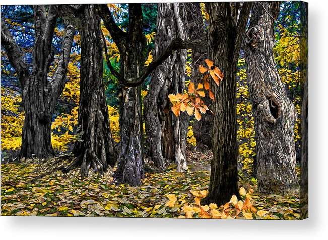 Landscape Acrylic Print featuring the photograph Autumn Landscape by Vladimir Kholostykh