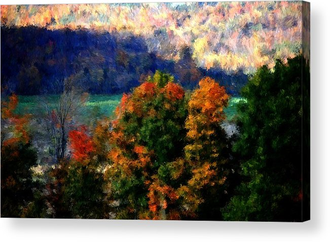 Digital Photograph Acrylic Print featuring the photograph Autumn Hedgerow by David Lane