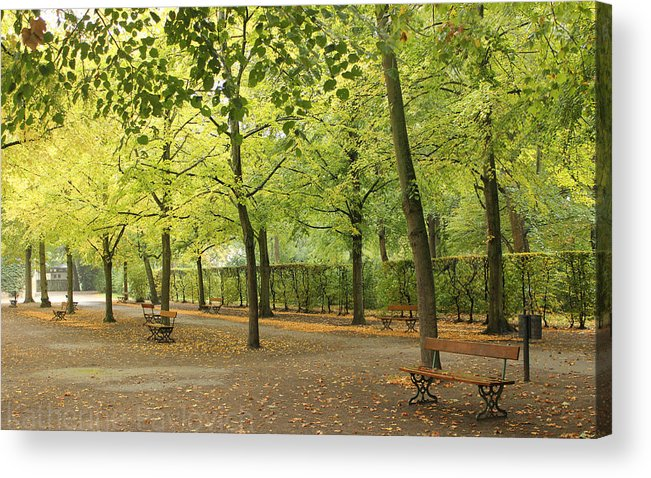 Park Acrylic Print featuring the photograph Benches In Wurzburg by Kate Pavlovich