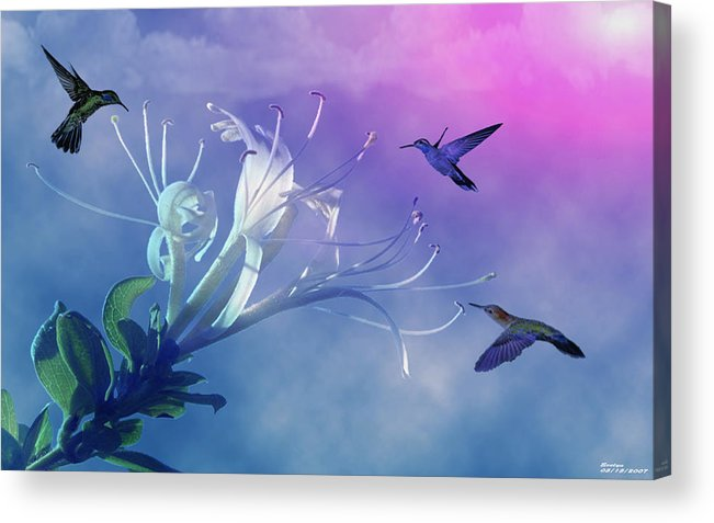 Wildlife Acrylic Print featuring the photograph Flower by Evelyn Patrick