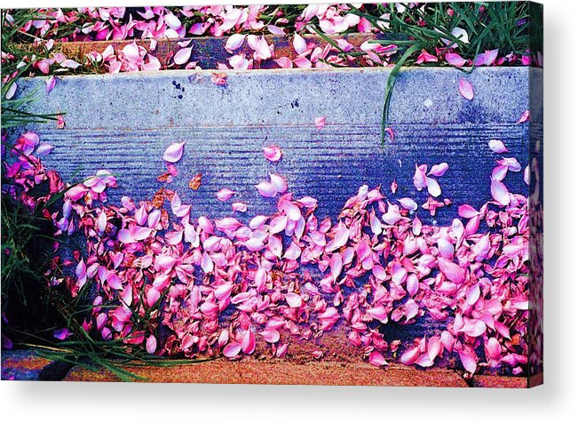 Flowers Acrylic Print featuring the photograph Flower Petals Saturated Ae by Lyle Crump