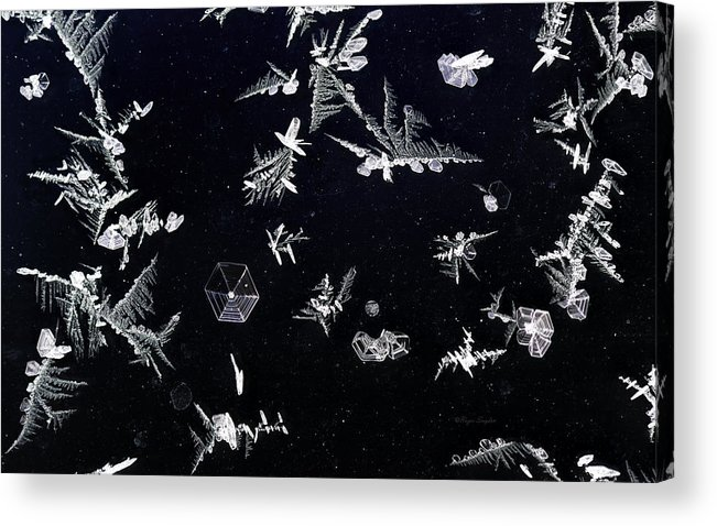 Beautiful Photos Acrylic Print featuring the photograph Frost On Car Window 1 by Roger Snyder