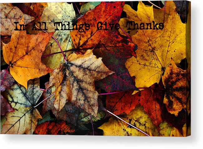 Fall Colors Acrylic Print featuring the photograph In All Things Give Thanks by Joanne Coyle