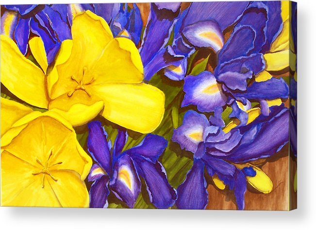 Watercolor Acrylic Print featuring the painting Iris Withtulip by Robert Thomaston