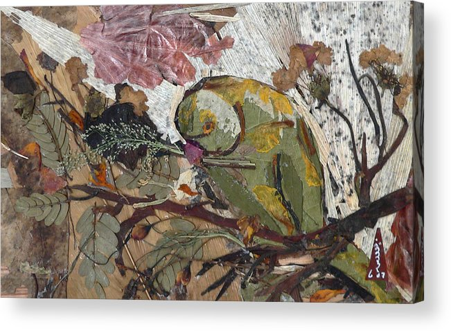 Colorful Green Bird Acrylic Print featuring the mixed media Parrot by Basant Soni
