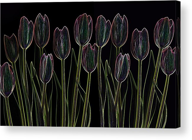 Scanography Acrylic Print featuring the digital art Velvet Tulips by Deborah J Humphries