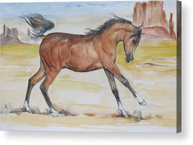 Horse Original Painting Acrylic Print featuring the painting Arizona Baby by Janina Suuronen
