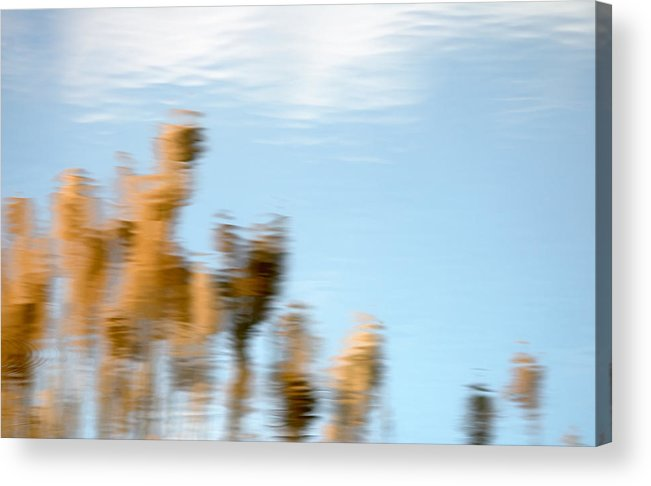 Nature Acrylic Print featuring the photograph Dream World by Steven Milner