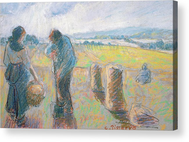 Agriculture Acrylic Print featuring the pastel Peasants In The Fields by Camille Pissarro