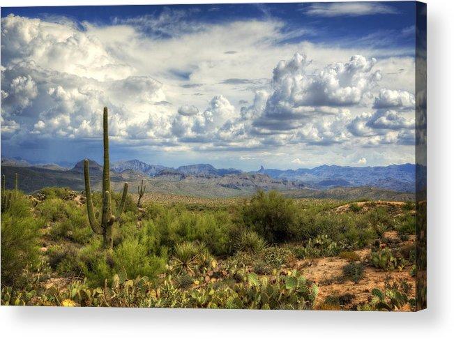 Arizona Acrylic Print featuring the photograph Visions Of Arizona by Saija Lehtonen