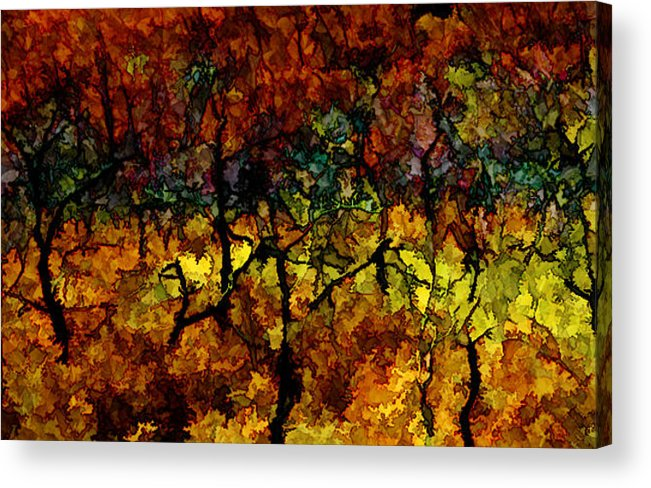 Colorado Acrylic Print featuring the photograph autumn oak rising after the fire - Mesa Verde by Ed Book